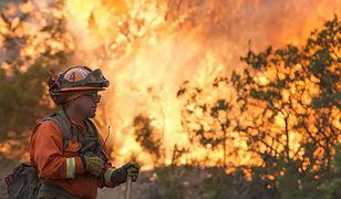 USA. Pożar w Kalifornii zmusił do ewakuacji 60 tys. osób