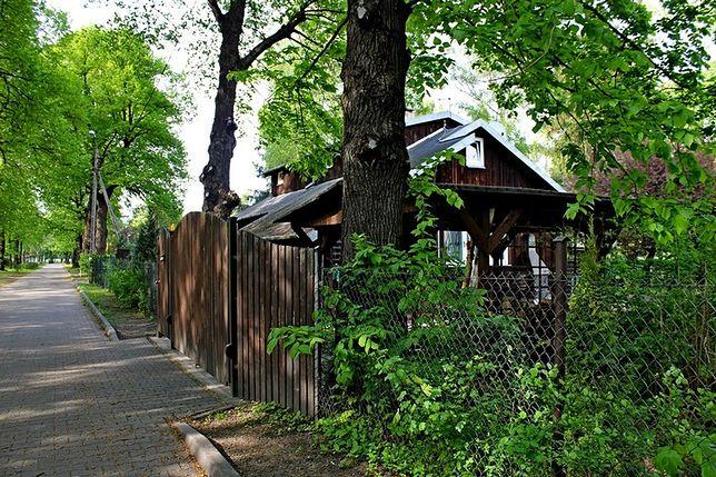 Władze Śródmieścia wciąż próbują się pozbyć domków fińskich