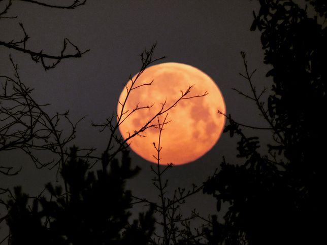 Księżyc i superpełnia