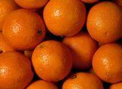 Coca-Cola rezygnuje z pomarańczy od imigrantów-niewolników