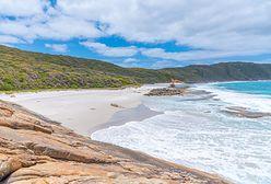 Australia. Atak rekina na słynnej plaży
