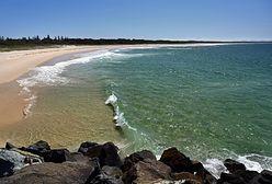 Australia. Zamknięto 20-kilometrowy odcinek plaży po śmiertelnym ataku rekina