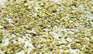 Łódź. Bałuty. 19-latek wniósł do sklepu słoik marihuany
