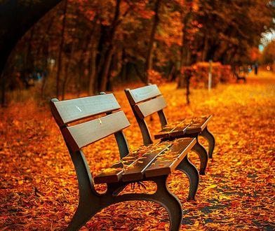 Wielkimi krokami zbliża się jesień