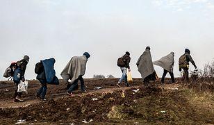 Uchodźcy w pobliżu granicy serbsko-macedońskiej.