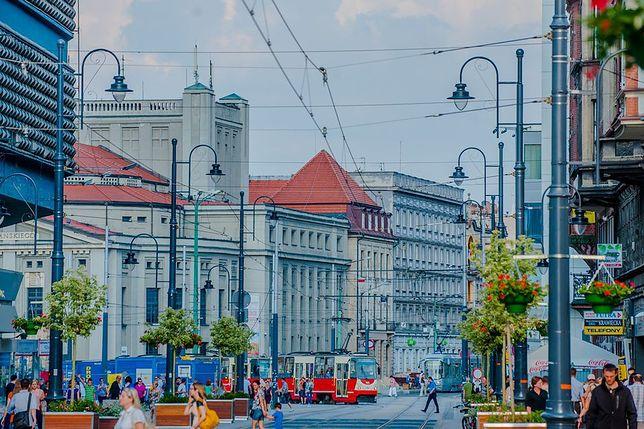 Katowice. Miasto zainwestuje w zieleń.