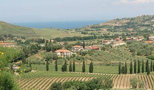 Cilento - w krainie mozarelii i wina