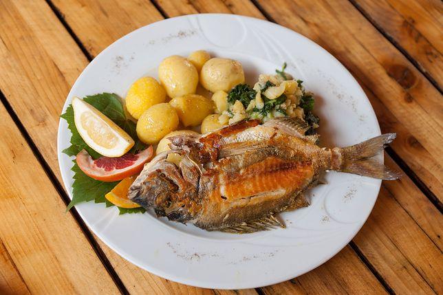 Dania z ryb powinny znajdować się w naszym jadłospisie codziennie. Przepisy na dania rybne