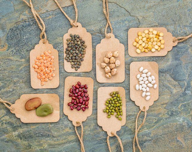 Groch to roślina strączkowa należąca do rodziny bobowatych. Przepisy z grochem
