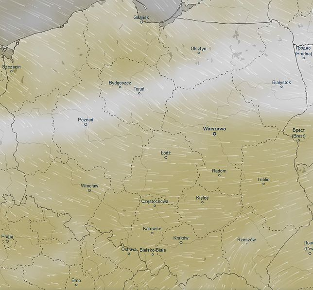 Mapa ilustruje szacowaną wilgotność w Polsce w piątek po południu