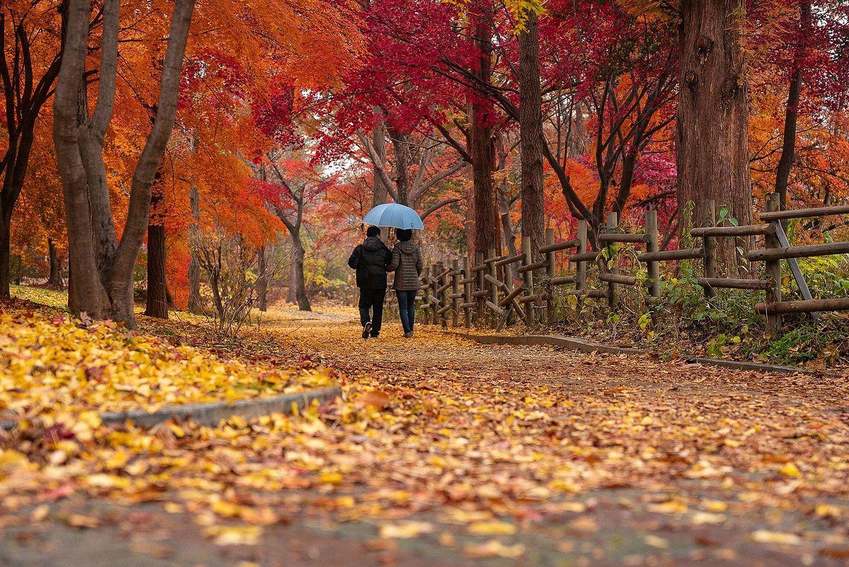 Śląskie. Prognoza pogody. W środę lepiej nie zapomnieć parasola.