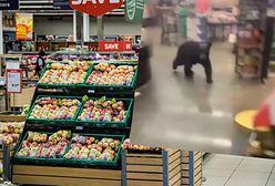 Stany Zjednoczone. Panika w markecie. Niedźwiedź wpadł między półki!