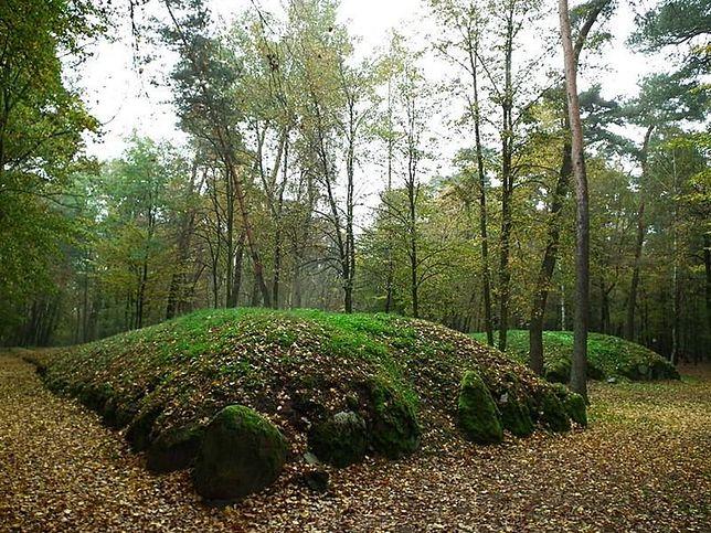 Grobowce megalityczne w Wietrzychowicach