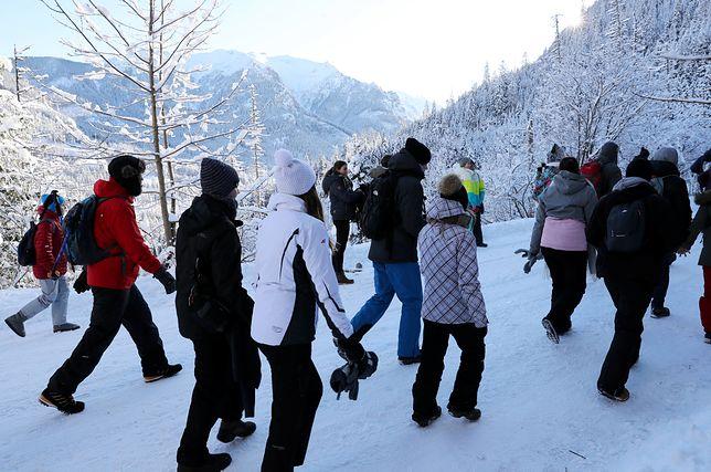 Turyści wychodzą na górskie szlaki.