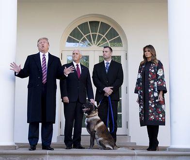 Conan w Białym Domu. To pies, który ścigał szefa ISIS
