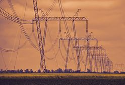 Rachunki za prąd wzrosną o 700 zł. Rząd to ukrywał