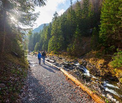 Parki narodowe w Polsce. Skarby natury na wyciągnięcie ręki