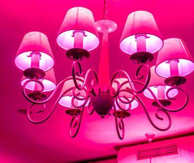 Oświetlenie domu: jak wybrać lampy?