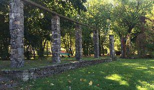 Rusza akcja wydobycia kilku tysięcy nagrobków z parku na Pradze Południe