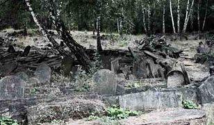 Za darmo: spacer po Cmentarzu Żydowskim