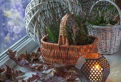 Najpiękniejsze dekoracje wnętrz na jesień