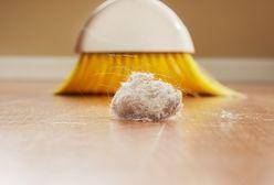Domowe porządki: jak pozbyć się kurzu - skutecznie i na długo?