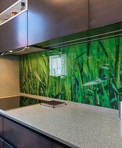 Szklane panele wnętrzarskim hitem. Umieścisz je nie tylko w kuchni