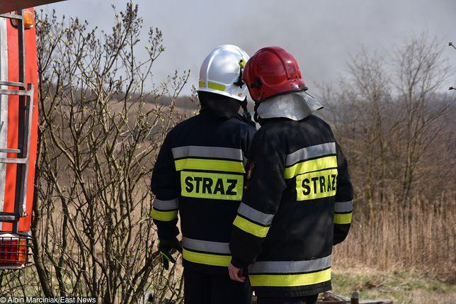 Duży pożar niedaleko Łodzi. Ponad stu strażaków w akcji