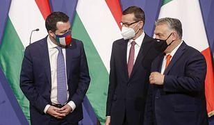 Koziński: Co łączy PiS, Fidesz i Ligę? Wspólny cel - rozbicie głównego nurtu w UE (Opinia)