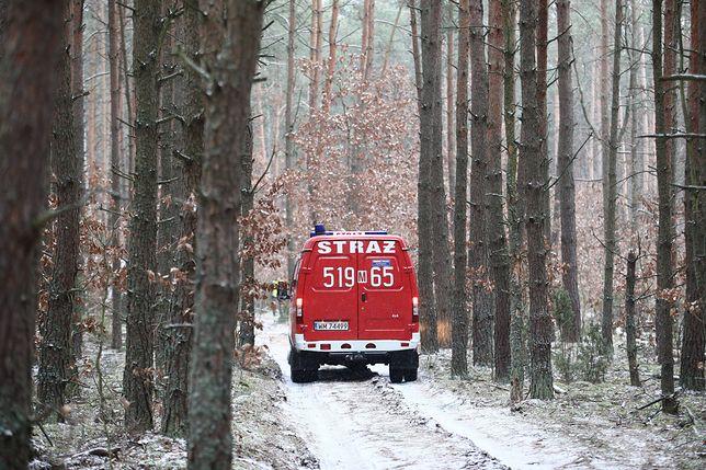 Strażacy odznaczeni przez MON. Pomagali ofiarom wypadku samolotowego