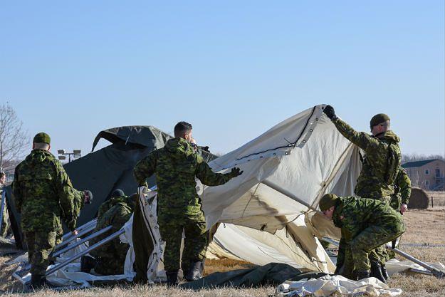 Kanada: 960 żołnierzy w tym kraju było w ubiegłym roku ofiarą seksualnego molestowania