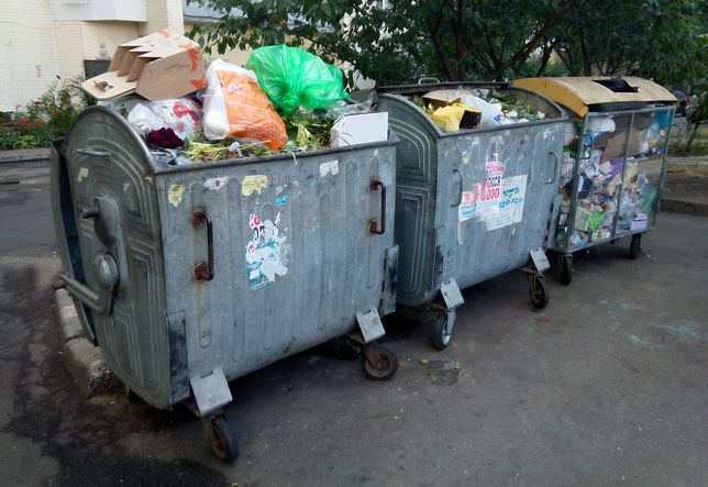 Polskie śmietniki są często wypełnione po brzegi. Uwierzysz, że nie ma w nich chleba i książek?