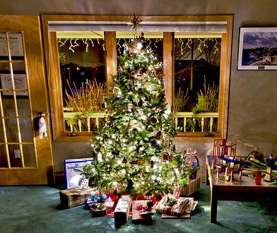 Tradycja ubierania świątecznej choinki pojawiła się w naszym kraju dopiero w XIX w.