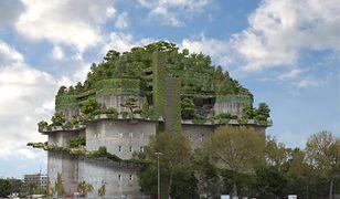 Zielony ogród na dachu jest pomysłem mieszkańców