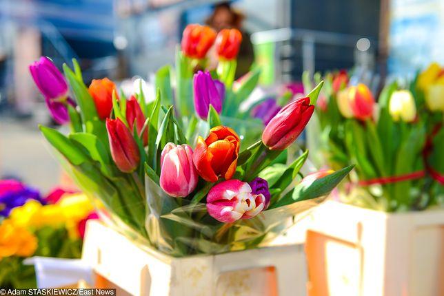Życzenia na Dzień Kobiet 2019. Najpiękniejsze życzenia, wierszyki i rymowanki na 8 marca