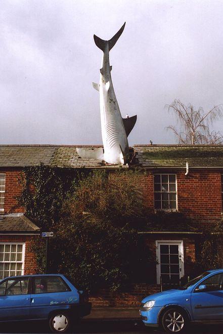 Rekin z Headington zyska status zabytku? Jest taka możliwość
