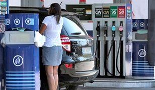 Koniec podwyżek cen paliw. Chroni nas mocna waluta