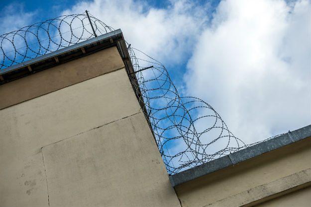 Pies udaremnił ucieczkę więźniów