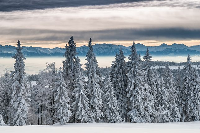 W sierpniu 1993 roku w tatrach spadło aż 90 cm śniegu