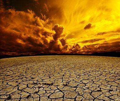 Zmiany klimatyczne są nieuchronne. Możemy tylko ograniczyć ich skalę