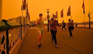 Sydney (Australia) spowite kłębami dymu.