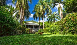 Wyspy Dziewicze - zobacz, gdzie Barack Obama zabrał Michelle na zasłużony urlop