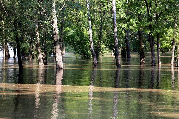 Powódź na północy Włoch. Cztery osoby nie żyją