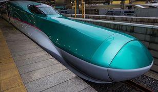 W rozwoju nowej linii kolejowej Shinkansen inżynier Nakatsu inspirował się trzema przedstawicielami królestwa ptaków