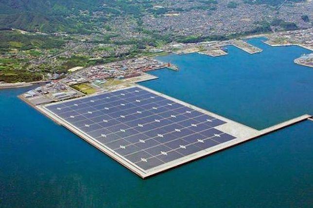 Japończycy budują największą na świecie farmę słoneczną