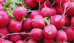 10 powodów, dla których warto jeść rzodkiewkę