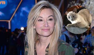 Martyna Wojciechowska prosi o pomoc w odnalezieniu kota