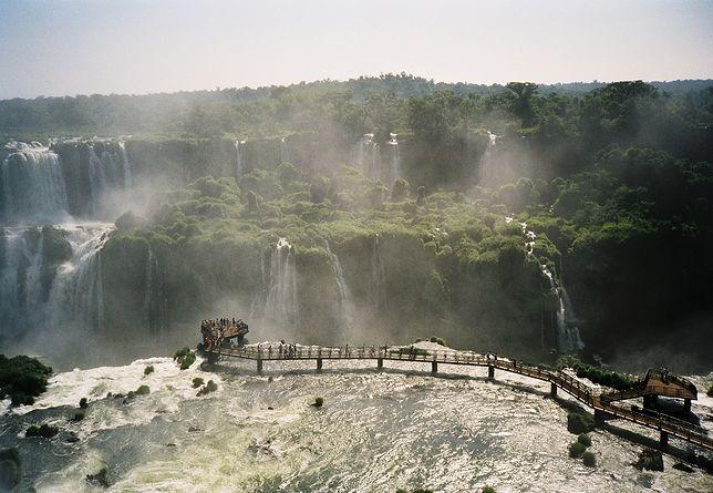 Wodospady Iguazu to także okazja do zobaczenia tukanów i krokodyli w ich naturalnym środowisku