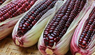 Fioletowa kukurydza. Recepta na młodość