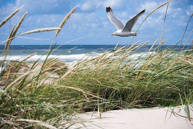 Pogoda nad morzem nie zachęci do opalania i zażywania kąpieli.